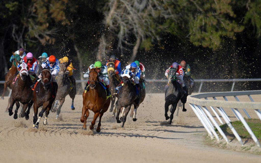 Horse Racing Betting Tips