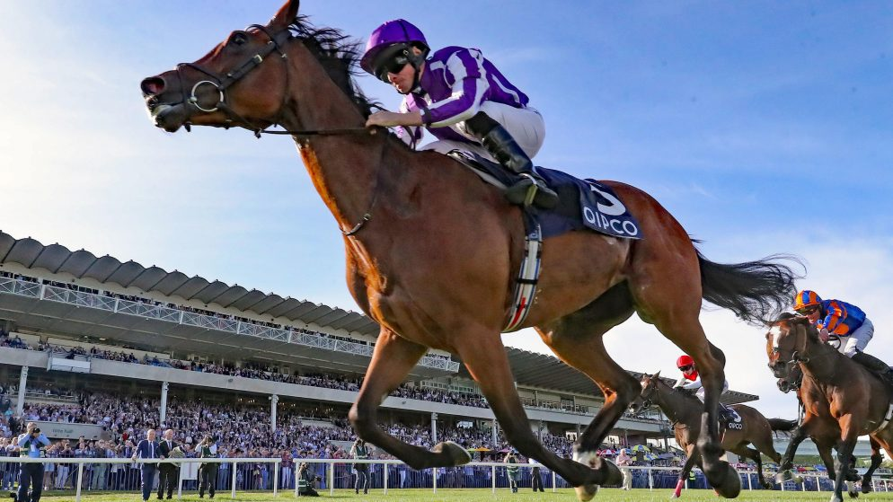 Horse Racing Betting Strategies